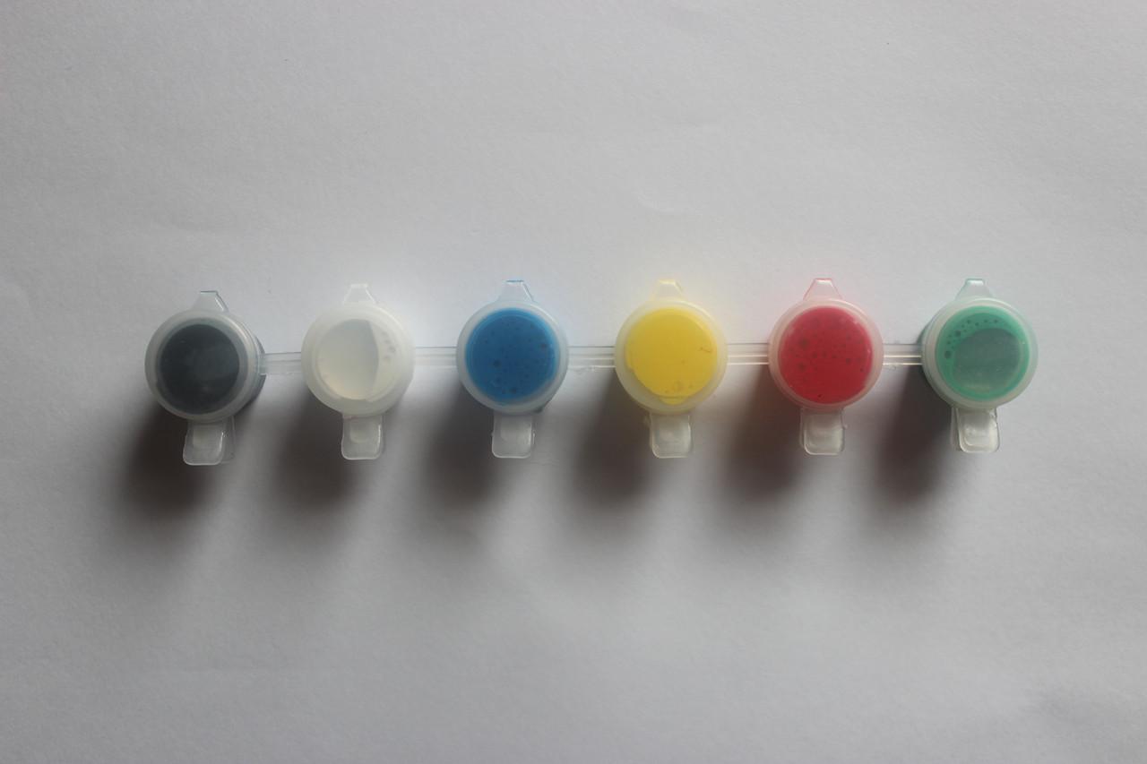 Набор акриловых красок 6 цветов/2 мл