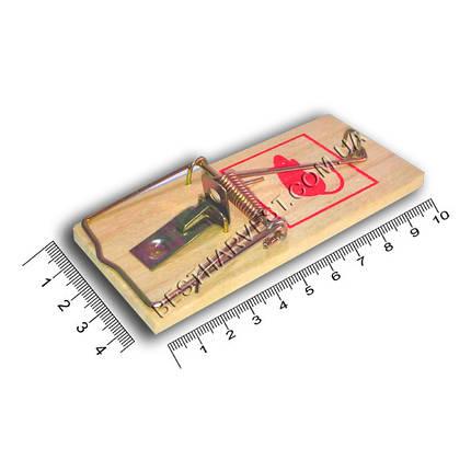 Мышеловка деревянная (10х4,5 см) ТМ «Агромакси», оригинал, фото 2