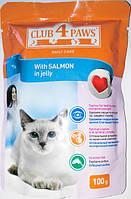 Корм Club 4 Paws консервированный полнорационный для взрослых кошек с лососем в желе 100г
