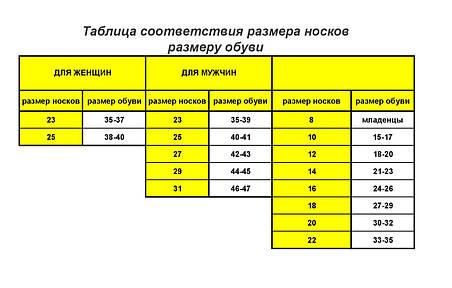 Носки мужские демисезонные Мисюренко, р 25,27,29, фото 2