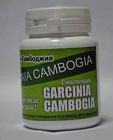 Garcinia cambogia - средство для похудения (Гарциния Камбоджийская), порошок