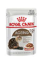 Консервы 85 г для кошек старше 12 лет Роял Канин / AGEING+12 WET Royal Canin