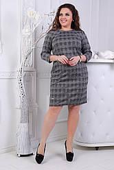 Платье БАТАЛ  клетка 51/0304