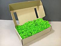 Стабилизированный мох в коробке (Grass Green Light)