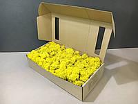 Стабилизированный мох в коробке (Yellow)