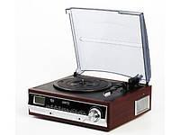 Радио CAMRY CR1113