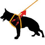 Шлея для собак ERGOFLEX P FASHION DENIM L Ferplast (Ферпласт) с мягкой подкладкой, фото 5