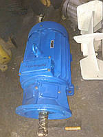 Электродвигатель мтф 111-6 3.5 квт 920 об, фото 1