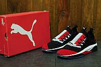 Мужские кроссовки для бега Puma tsugi jun пума весна-лето - Топ качество!Текстиль, Вьетнам,размеры:41-44, фото 1