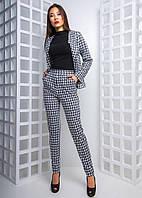 Модный женский деловой костюм (трикотаж, принт, узкие брюки, карманы, жакет, длинные рукава)
