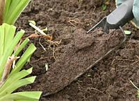 Определяем тип почвы на участке
