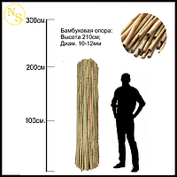 Бамбуковый ствол, опора L 2,13м. диам. 12-14мм., фото 1