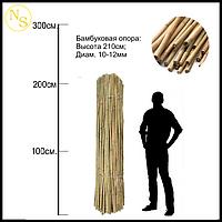 Бамбуковый ствол, опора L 2,13м. диам. 12-14мм.
