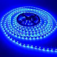 Лента светодиодная синяя LED 3528 Blue 60RW Хит продаж!
