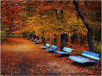 Коллекция Осень-Зима!