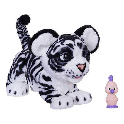 Интерактивная игрушка Фуриал Белый Амурчик Тигрёнок FurReal Friends Roarin' Ivory The Playful Tiger, фото 2