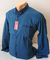 Рубашка в клетку Red polo