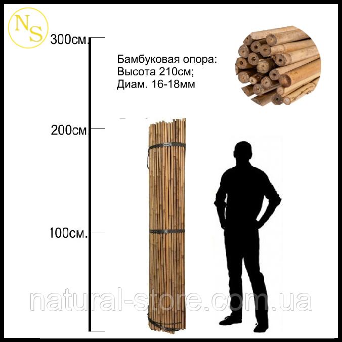 Бамбуковый ствол, опора L 2,13м. диам. 16-18мм.
