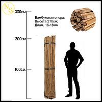 Бамбуковый ствол, опора L 2,1м. д. 16-18мм.