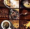 Кофемолка DOMOTEC MS-1406, фото 2
