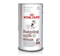 Royal Canin Babydog Milk 400г  (4 х 100г)-заменитель молока для щенков с рождения до отъема, фото 2