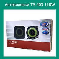 Автоколонки TS 403 110W