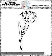 Набор штампов тюльпан