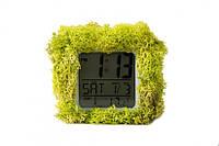 Эко-часы хамелеон Код: 653618138