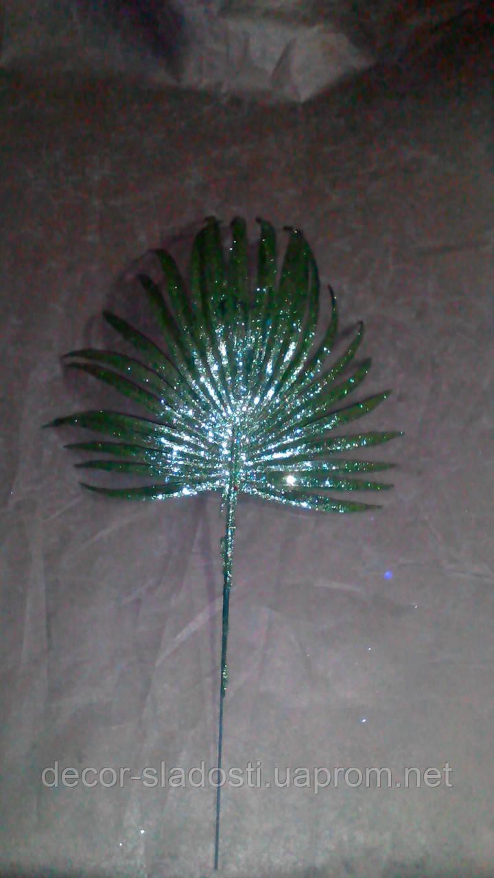 Ветка пальмы блеск