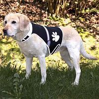 Trixie TX-30215  жилет безопасности  для собак 36-58см
