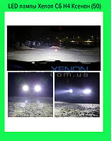 LED лампы Xenon C6 H4 Ксенон (50)