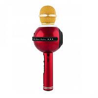 Микрофон WS-878 WESTER