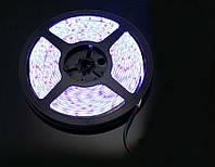 Гибкая светодиодная лента 3528/60 12v 5м. Белая