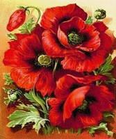 """Набор алмазной вышивки (мозаики) цветы """"Красные маки"""""""