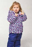 """Костюм куртка и полукомбинезон зимний для девочки Thermo""""Цветной леопард"""" """"Babyline"""", белый и синий, 92(80-104), 92 см"""