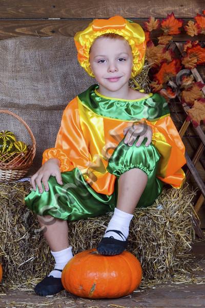 Купить Карнавальный костюм Тыква для мальчика. Продажа ... - photo#44