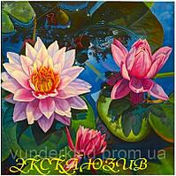 """Картины по номерам на холсте """"Цветочный пруд"""" 30х40см"""