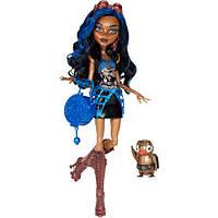 Кукла Monster High Robecca Steam Doll, Монстер Хай Робекка Стим, базовая.