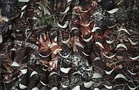 Маскировочная камуфляжная сеть размер 3х6 м, Сетка маскировочная Shelter Picnic 3*6 м., фото 1