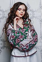 Вишита блуза в сучасному дизайні