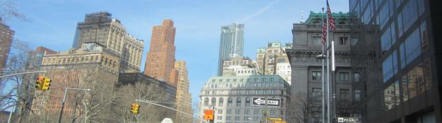 Женские шаровары больших размеров - Нью-Йорк,Perl Street