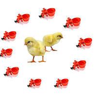 Автоматическая подача птицы питьевой воды чашки куриного компаниях изредка