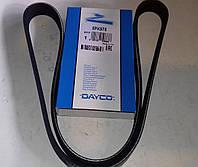 Ремень поликлиновый (ручейковый) генератора Ланос Lanos 1.5 с гидроусилителем  DAYCO 5PK975