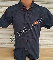 Стильная рубашка(шведка) для мальчика 6-14 лет(опт) (темно синяя) (пр. Турция)