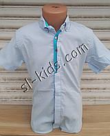 Стильная рубашка(шведка) для мальчика 6-14 лет(опт) (голубая 02) (пр. Турция)
