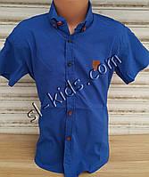 Стильная рубашка(шведка) для мальчика 6-14 лет(ярко синяя) (пр. Турция)