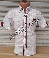 Стильная рубашка(шведка) для мальчика 6-14 лет (белая01) (пр. Турция)