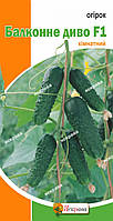 Огурец Балконное чудо комнатный (5 семян)
