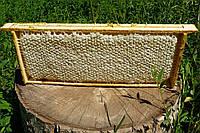 Сотовый мёд 2016 года