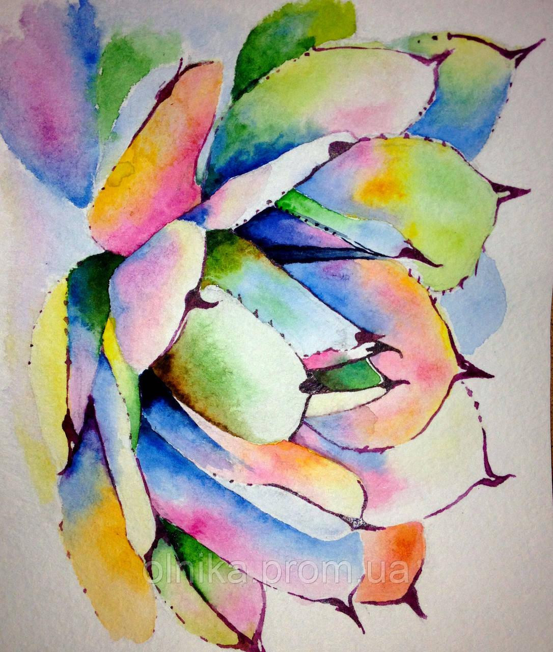 Разноцветный сукулент
